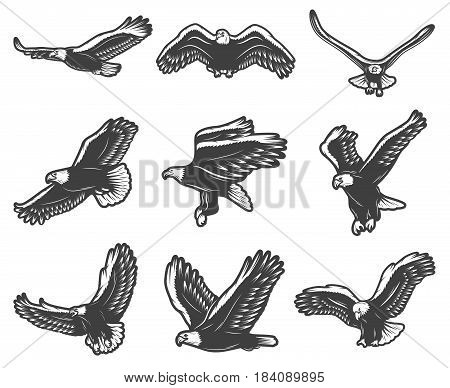 Vintage beautiful flying eagles set in different poses symbolising courage pride and majesty isolated vector illustration