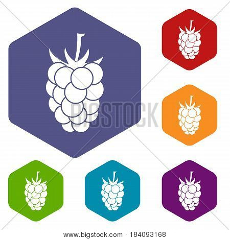 Blackberry fruit icons set hexagon isolated vector illustration