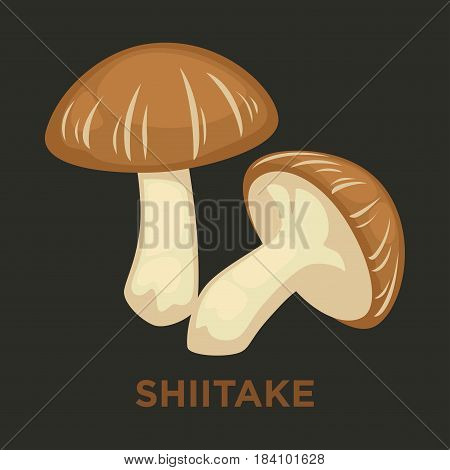 Shiitake edible mushroom. Vector isolated flat icon for mushrooming or gourmet cuisine design