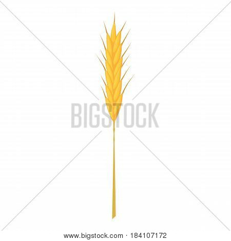 Wheat stalk icon. Cartoon illustration of wheat stalk vector icon for web