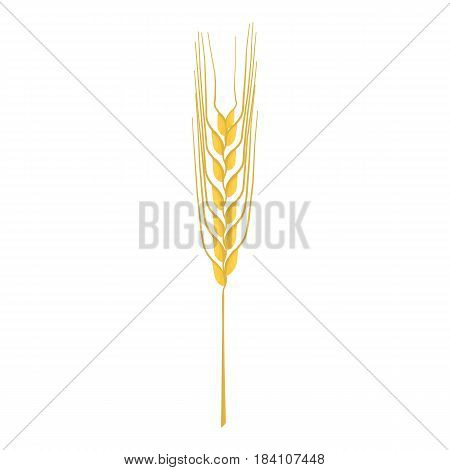 Cereal plant stalk icon. Cartoon illustration of cereal plant stalk vector icon for web