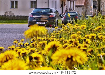 Stvolinky Machuv kraj Czech republic - April 14 2017: black car Opel Astra H stand on green square in spring afternoon