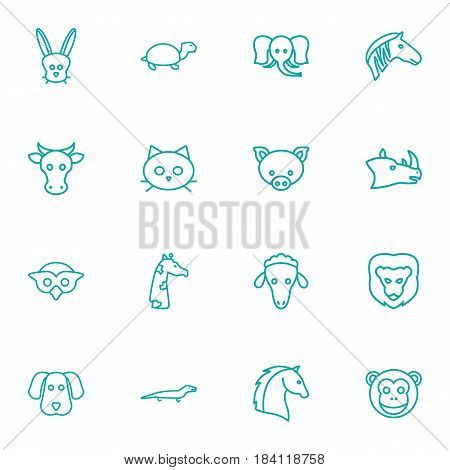 Set Of 16 Brute Outline Icons Set.Collection Of Dog, Lizard, Pig And Other Elements.