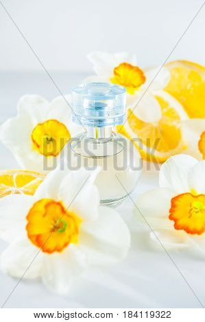 Orbicular Perfume Bottle Surrounded By Fresh Daffodils Flowers And Lemon Slices Isolated On White Ba