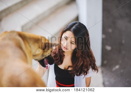 Young beautiful girl stroking her dog at sunset. Asian woman playing with her dog