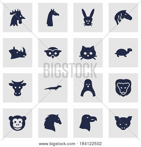 Set Of 16 Brute Icons Set.Collection Of Ape, Wildcat, Gecko And Other Elements.