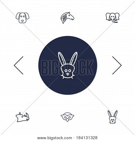 Set Of 6 Alive Outline Icons Set.Collection Of Dog, Owl, Rhino And Other Elements.
