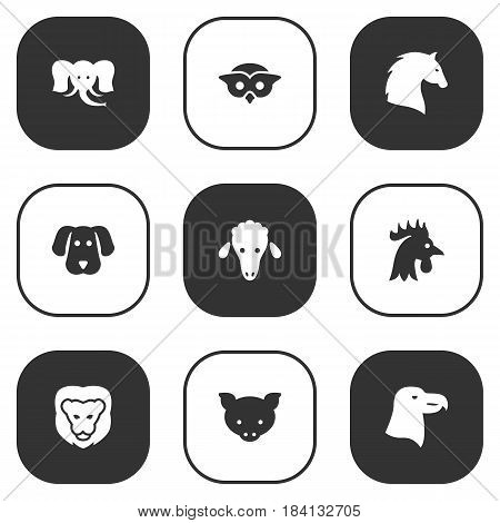 Set Of 9 Alive Icons Set.Collection Of Lamb, Night Fowl, Hound And Other Elements.