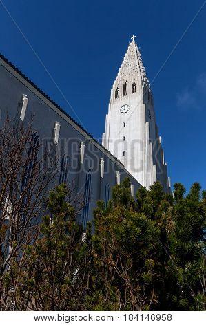 Hallgrimskirkja Cathedral In Reykjavik, Iceland