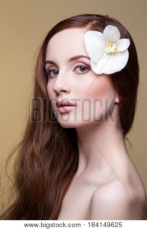 Beautiful young woman with pale skin and natural long red brown hair with orchid flower in it. Beauty shot on beige background. Copy space.