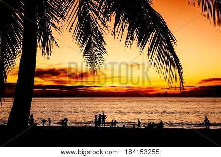 Silhouette some people and coconut palm tree on the sand beach with color of sunset in twilight