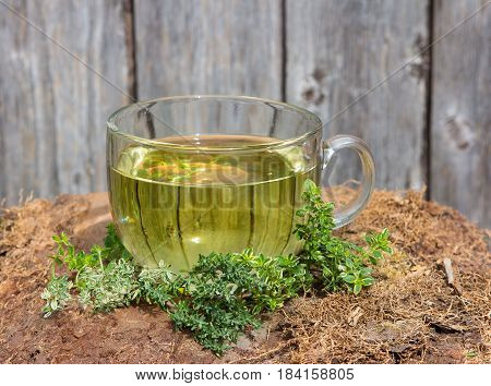 Tea Or Infusion Of Thyme
