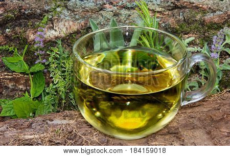 A Clear Cup Of Herbal Tea In Front Of Differnt Herbs.