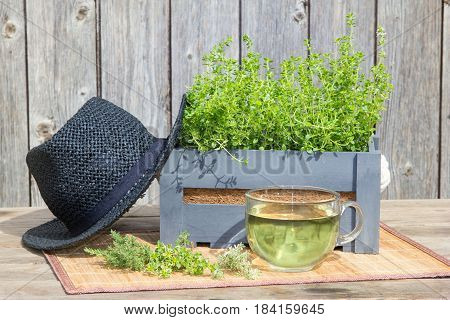 Tea Or Infusion Of Thyme.