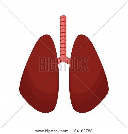 lung human anatomical health image vector illustration