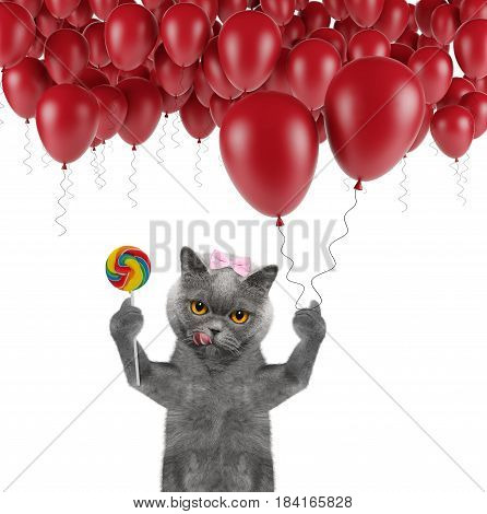 Cute cat with balloon and lollipop -- isolated on white
