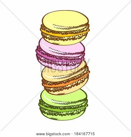 Sweet french macaroons. Pasty traditional sweet macaroons biscuit. Cartoon style. Isolated on a white background.