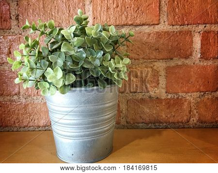 Small Bonsai Tree In The Clay Pots With Orange Brick.