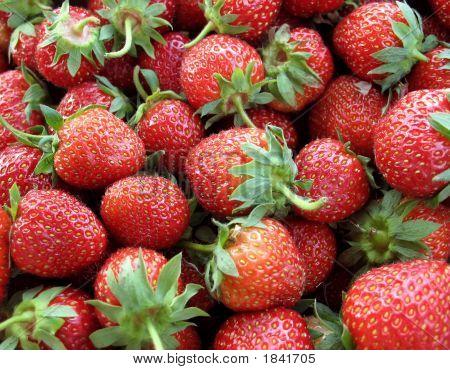 Farm-Fresh Organic Red Ripe Strawberries