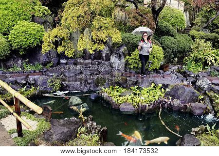 Magnificient japanese garden in Hasedera Temple the Five Wisdom Kings of the Womb Realm in Kamakura, prefecture Kanagawa, Japan.