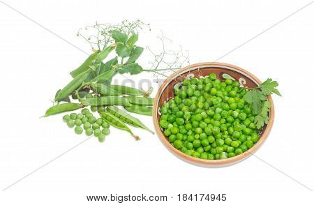 Blanched green peas in bowl pea pods and branch