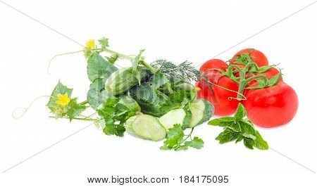 One sliced and several fresh whole cucumbers creeping cucumber stem with the leaves and flower branch of the red tomatoes and twigs of the parsley dill and green basil on a light background