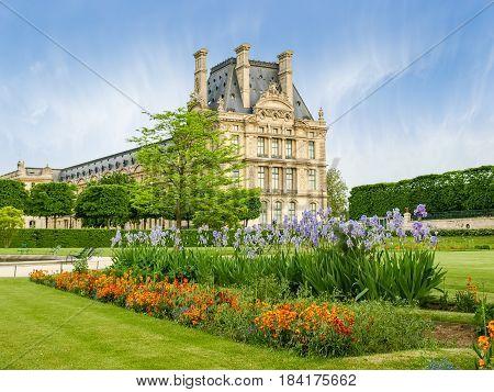 Flower bed with flowering irises in the Tuileries Garden in Paris in springtime