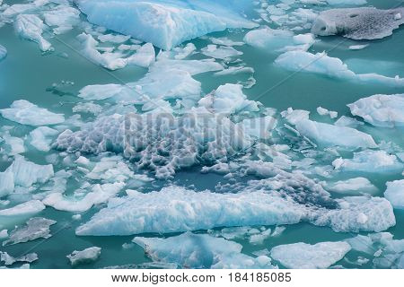 Chunks of fallen ice floating in the lake beneath a glacier in Argentina