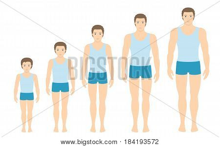 Man's body proportions changing with age. Boy's body growth stages. Vector illustration. Aging concept. Illustration with different man's age from baby to adult. European men flat style.