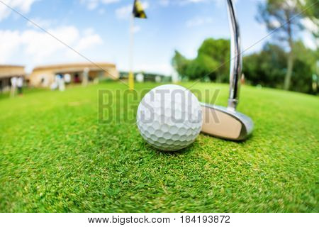 Close-up picture of golf ball and niblick ready to swing on the putting green of course
