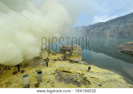 Vulcano Ijen Indonesia - 5 February 2013: Miners with their sulfur crops climb the ijen crater on the island of Java Indonesia
