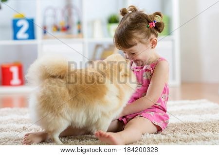 Funny kid playing with dog Spitz at home
