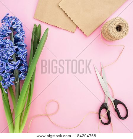 Blue hyacinth, craft paper, scissors and twine on pink background. Flat lay, Top view. Feminine workspace