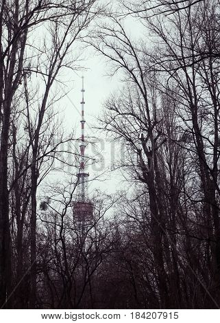 Kyiv television tower in winter haze The view through the branches of trees of Babi Yar