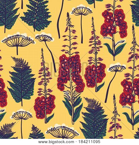 A seamless pattern with forest and field plants and flowers. Angelica, fern, fireweed. Background with medical herbs. Vector illustration.
