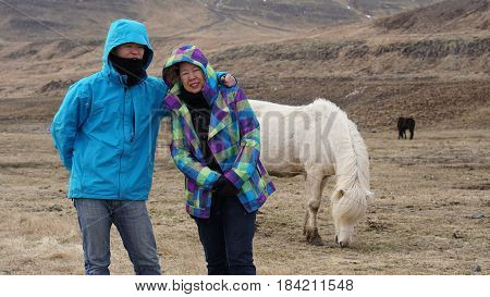 Asian son and mother taking family trip to Iceland. Haveing fun taking photo with Icelandic horse