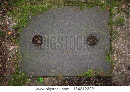 Metal drain cover in concrete path with moss leaves and twigs all around