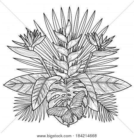 Tropical bouquet with flowers, leaves and butterfly. Tropic floral outline composition isolated on white background. Mock up for coloring pages and books.