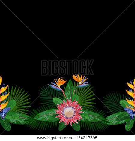 Tropical seamless border with flowers, leaves and butterfly. Tropic floral composition with place for text on black background. Jungle textile print with protea.