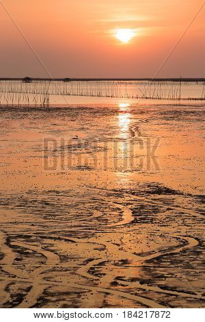 Sunset Over Sea Shore And Wetland With Silhouette Shell Farm