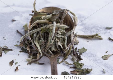 Leaves Of White Tea In A Spoon On A White Background. Tea In An Antique Spoon.
