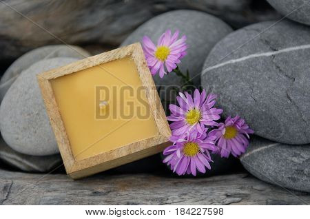 nature driftwood wood and handmade candle with gray stone,pink gerbera