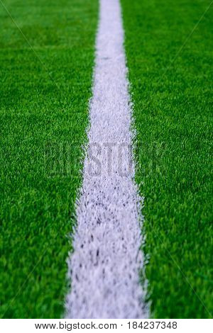 White line on green grass of a soccer field. Selective focus