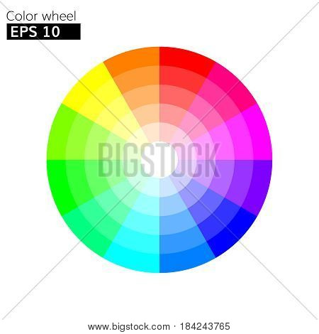 rgb Color wheel 12 colors vector with 20 percent step color circle with harmony design