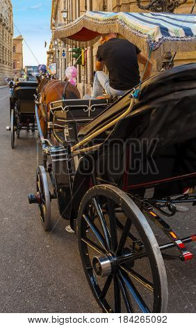 horse and carriage in the Quattro Canti one of the octagonal four sides of Baroque square in Palermo - Italy