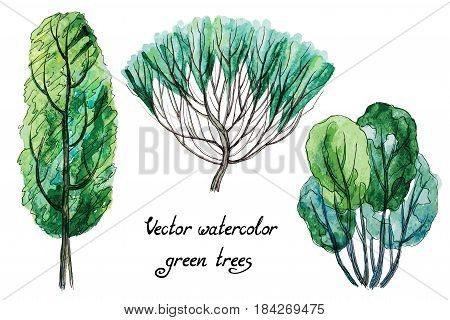 Vector set of hand drawn watercolor pictorial green trees, isolated on the white background for your landscape design