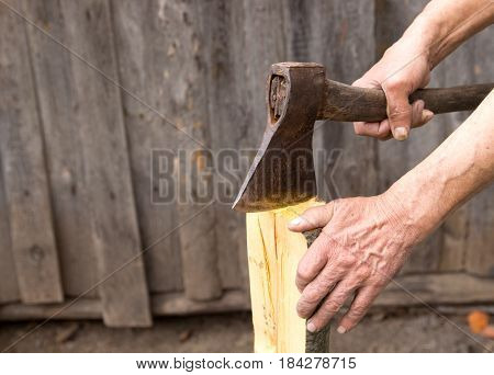 The Old Axe In The Hands Of An Elderly Person Colitis Firewood