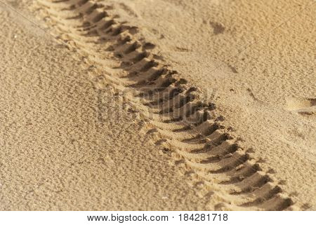 close-up of engine tyre trace track on a sandy beach on a sandy beach of in sunlight
