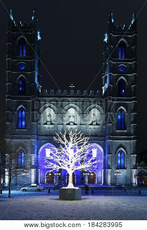 Notre dame Cathedral with an illuminated tree in front of the cathedral during winter time in Montreal, Canada
