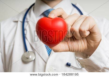 Cardiologist Doctor Is Showing Red Plastic Heart.